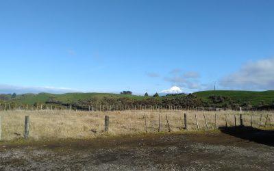 ILI in beautiful New Zealand