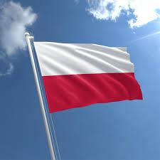 i2i Office Cracow Poland